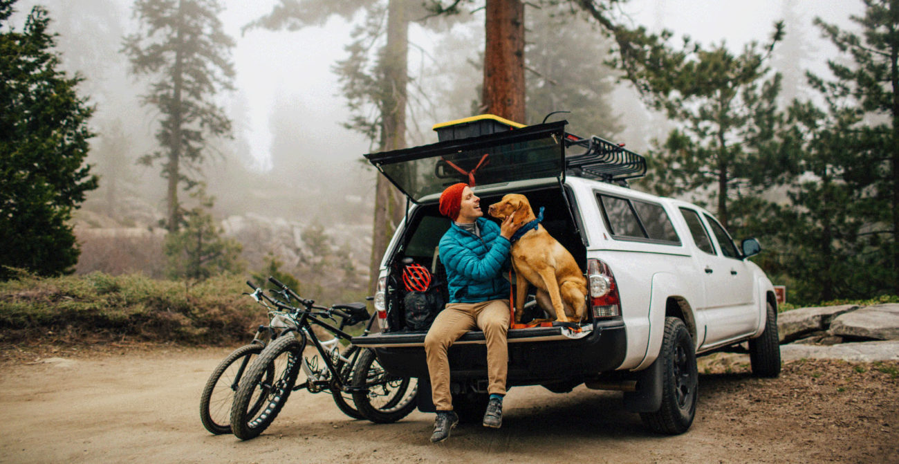 Travellers will put their pets at the forefront when planning their getaways in 2020. Image: Getty